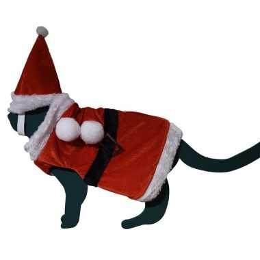 Katten / poezen kerstmanpakje met hoed one size kopen