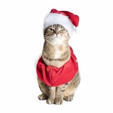 Kerstmuts en sjaal honden of katten