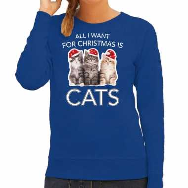 Kitten kerst sweater / outfit all i want for christmas is cats blauw voor dames kopen