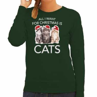 Kitten kerst sweater / outfit all i want for christmas is cats groen voor dames kopen
