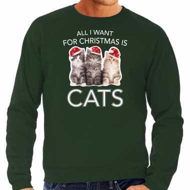 Kitten kerst sweater / outfit all i want for christmas is cats groen voor heren kopen