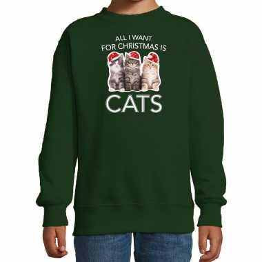 Kitten kerst sweater / outfit all i want for christmas is cats groen voor kinderen kopen