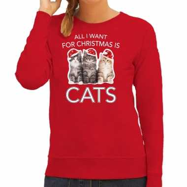 Kitten kerst sweater / outfit all i want for christmas is cats rood voor dames kopen