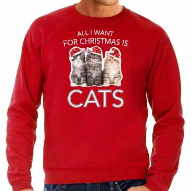 Kitten kerst sweater / outfit all i want for christmas is cats rood voor heren kopen