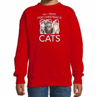 Kitten kerst sweater / outfit all i want for christmas is cats rood voor kinderen kopen