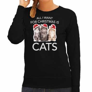 Kitten kerst sweater / outfit all i want for christmas is cats zwart voor dames kopen