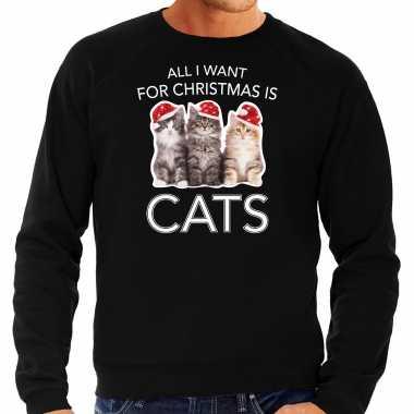 Kitten kerst sweater / outfit all i want for christmas is cats zwart voor heren kopen