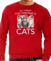 Kitten kerst sweater outfit all i want for christmas is cats rood voor heren